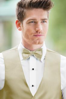 Expressions Champagne Bow Tie