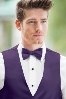 Expressions Regency Bow Tie