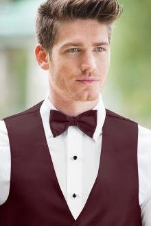 Expressions Wine Bow Tie