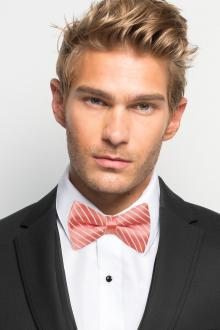 Coral Reef Striped Bow Tie
