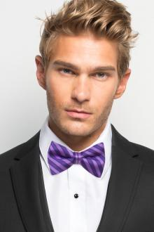 Purple Striped Bow Tie