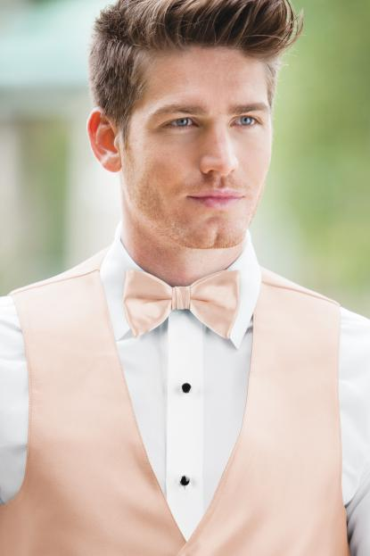 Expressions Blush Bow Tie