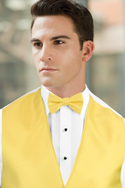 Synergy Canary Bow Tie