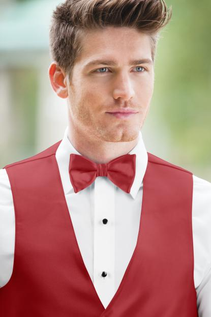 Expressions Cherry Bow Tie