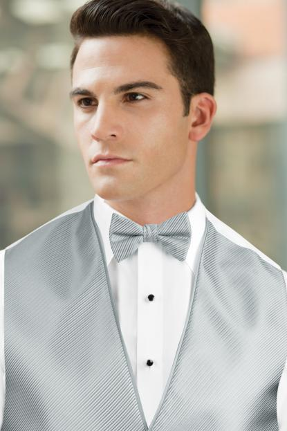 Synergy Platinum Bow Tie