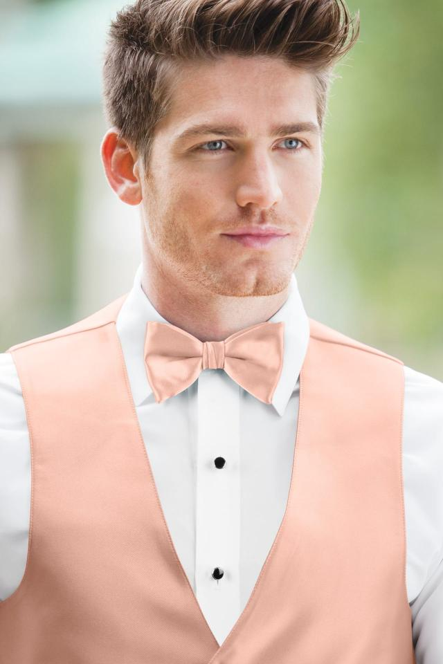 Expressions Bellini Bow Tie