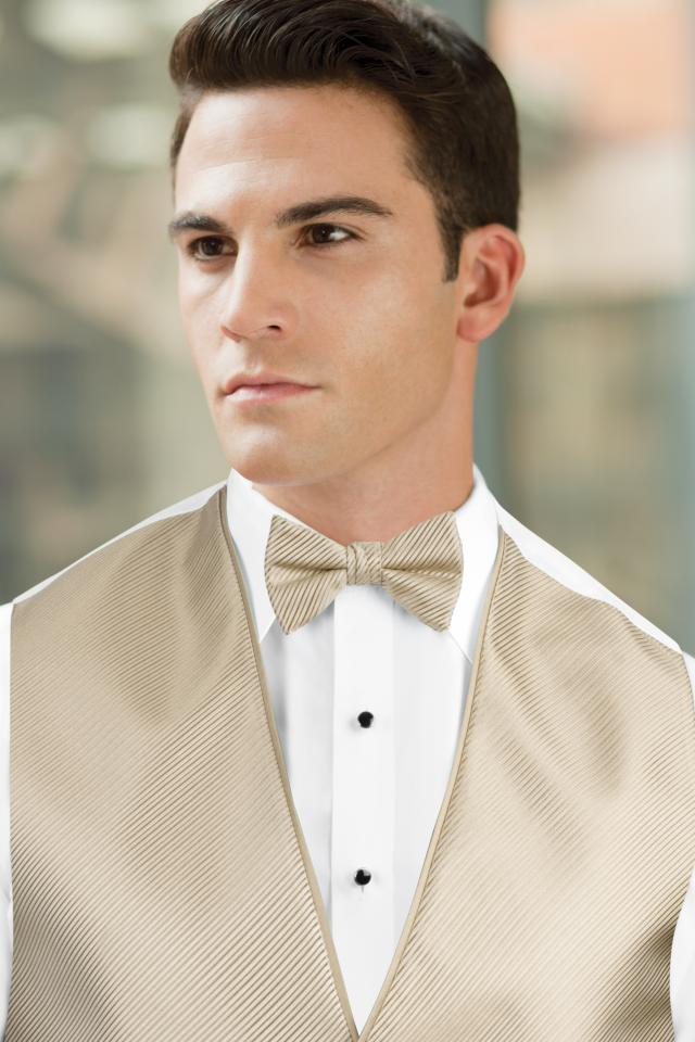 Synergy Champagne Bow Tie