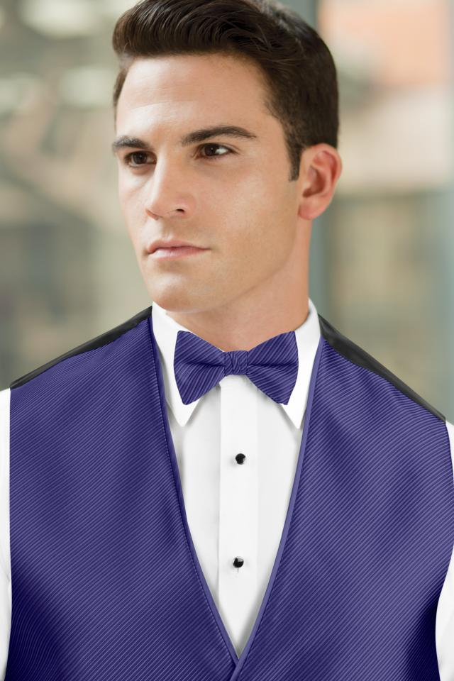Synergy Purple Storm Bow Tie